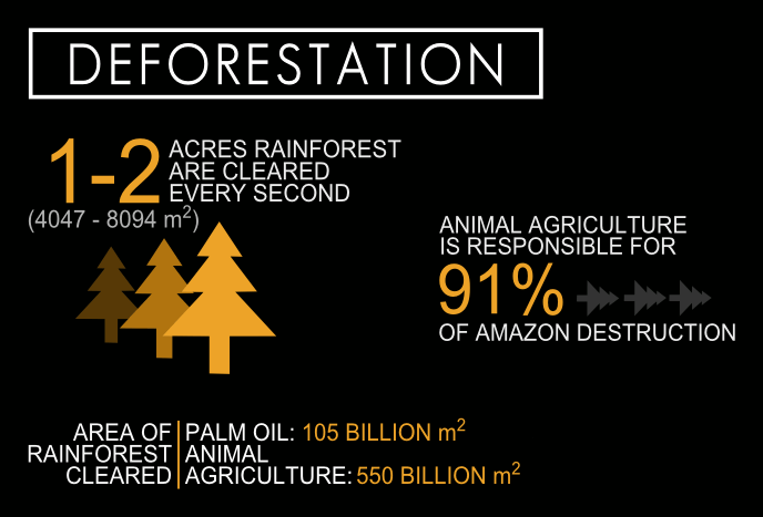cowspiracy-Infographic-deforestation-1