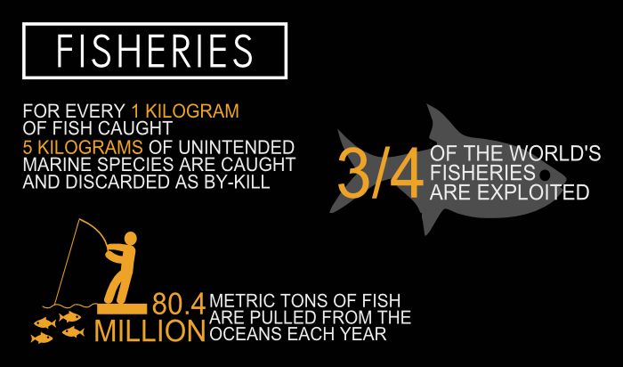 cowspiracy-Infographic-fisheries-1