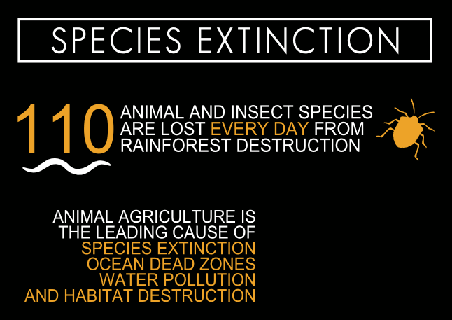 cowspiracy-Infographic-species-extinction-1