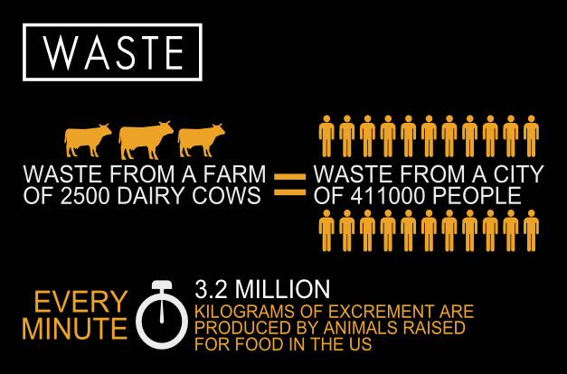 cowspiracy-Infographic-waste-1