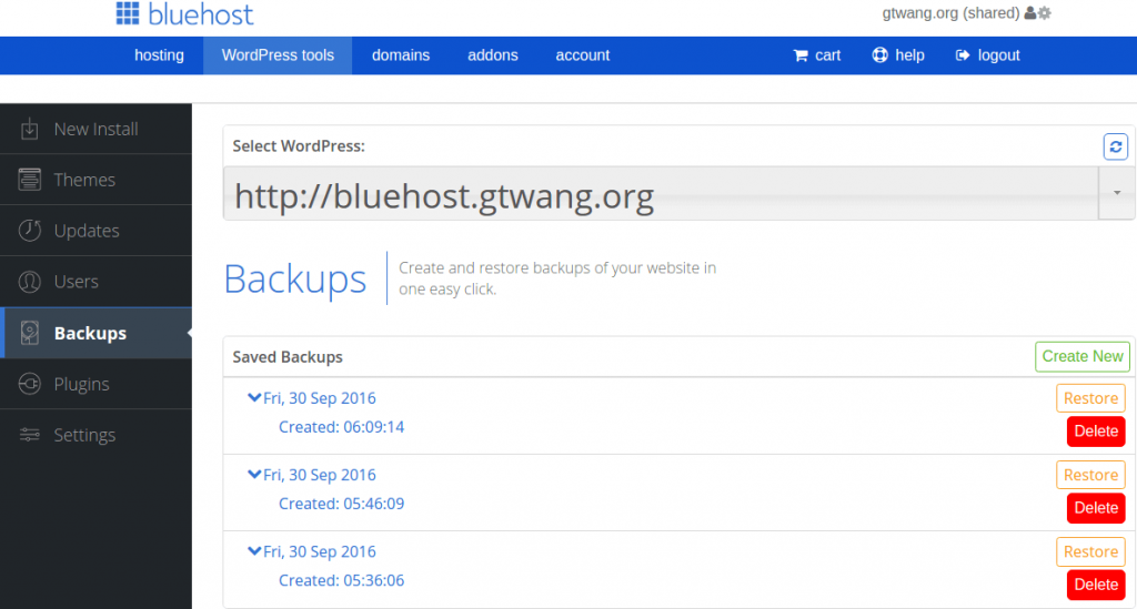 bluehost-shared-hosting-wordpress-website-backup-tutorial-5